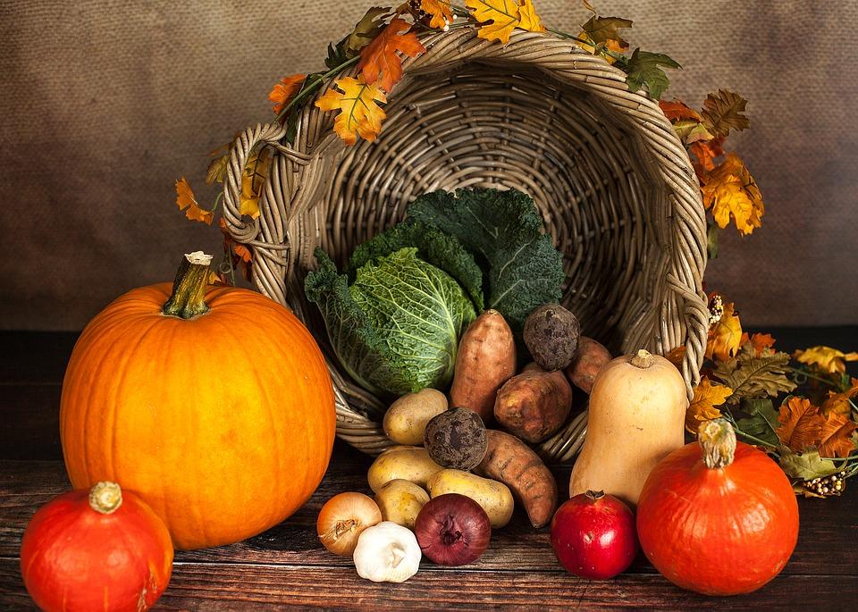 podzimní plody